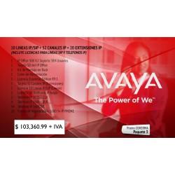 Paquete 3 Avaya IP